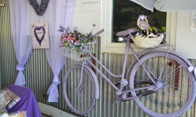 Bydlení ve stylu Provence přináší klid i pohodu